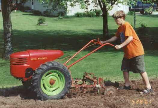 David Bradley Garden Tractor Value Garden Ftempo